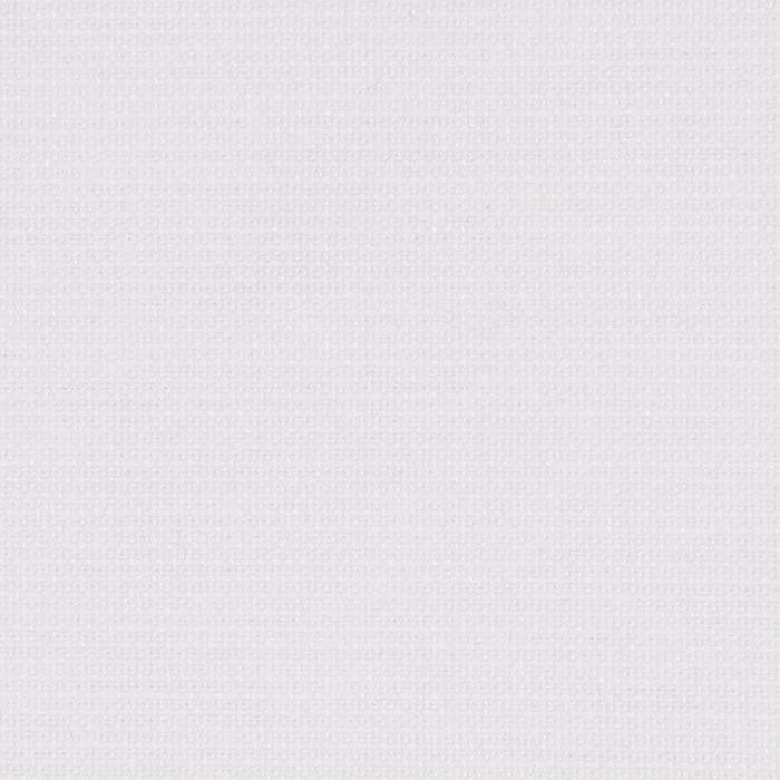 02-white.jpg