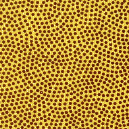 g320-yellow-gold-mystic.jpg