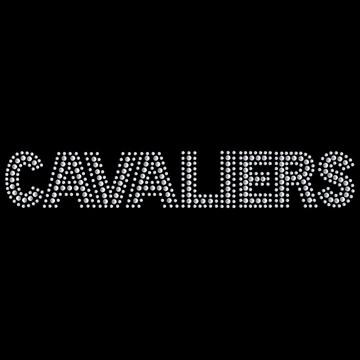 HP38- Cavaliers - Studs/Rhinestones