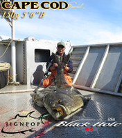 "Jigging Master PE6 Reel & Black Hole Cape Cod Special 150g 5'6""B Rod! Halibut from Alaska!"