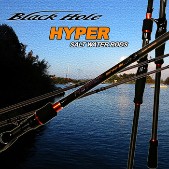 Black Hole HYPER Inshore Rod