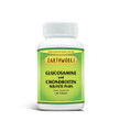 Glucosamine Chondroitin/Sulfate 120 by Dave Hawkins' EarthWorks