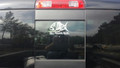 Sea Angler Gear Decal