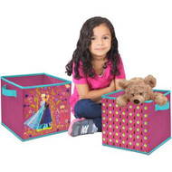 Frozen Storage Cubes, Set of 2, 10-Inch
