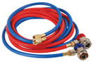 10' R134 Hose Set With Manual