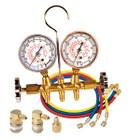 Dual Brass Manifold Set With