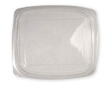 Lid for World Centric 8/12/16 oz. Clear, Rectangular Deli  | Sample