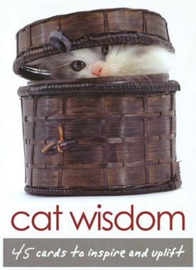 Cat Wisdom Cards by Toni Carmine Salerno