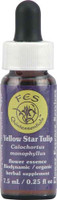 Flower Essence FES Quintessentials™ Yellow Star Tulip Supplement Dropper -- 0.25 fl oz