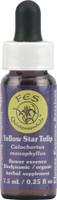 Flower Essence FES Quintessentials™ Yellow Star Tulip Supplement Dropper -- 0.25 fl oz