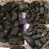 1 TEKTITE NUGGET IS $6.00