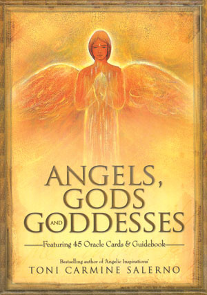 angels gods goddesses by toni carmine salerno