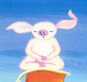 Meditating piggy