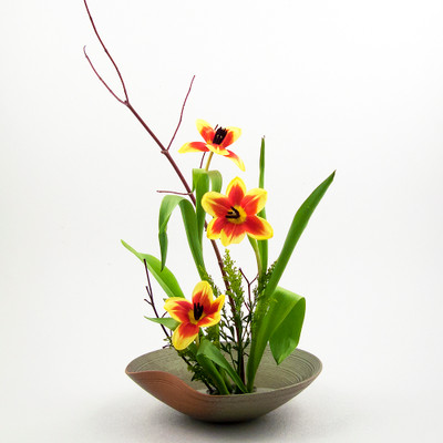 Ikebana Vases And Suiban Containers For Japanese Flower Arranging Ziji