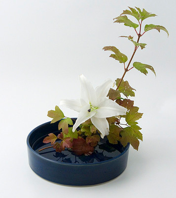 Blue round suiban with arrangement