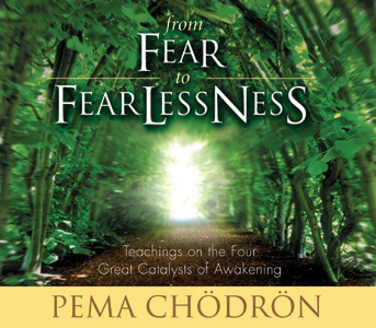 From Fear to Fearlessness CD
