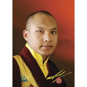 H.H. 17th Karmapa - D