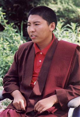 Tsoknyi Rinpoche - B
