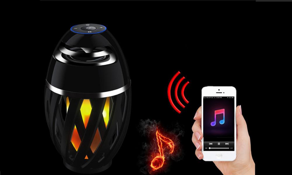 flame-speaker-format-2.jpg
