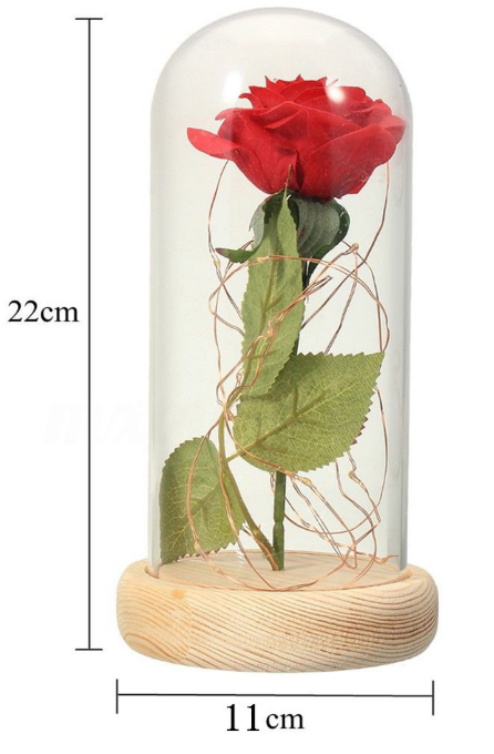 rose-lamp-size-final.png