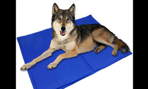Large Pet cooling gel mat