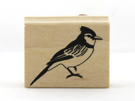 Blue Jay Bird Wood Mounted Rubber Stamp Martha Stewart