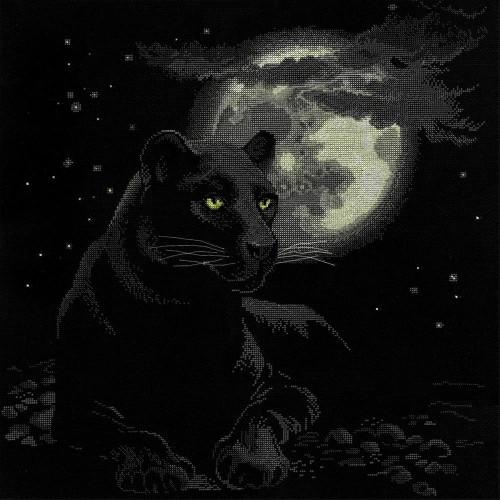 Full Moon Counted Cross Stitch Kit Riolis