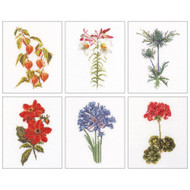 Floral Studies #2 On Linen Counted Cross Stitch Kit Thea Gouverneur