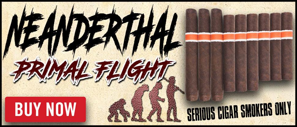 neanderthal-primal-flight-banner.jpg