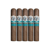AVO Syncro South America Ritmo Robusto (5x50 / 5 Pack)