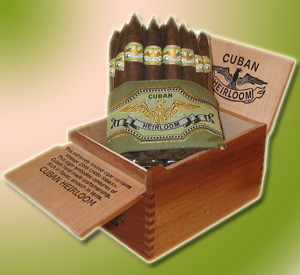 Cuban Heirloom Connecticut Robusto (4.88x50 / 5 Pack)