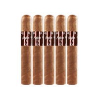Asylum 13 Authentic Corojo Robusto (5x50 / 5 Pack)