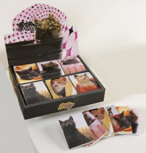 Collins Kitty Novelty Notes - Set of 48 in Display