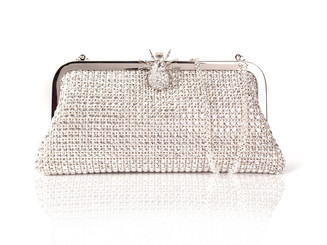 Silver Spider Clasp Crystal Bag