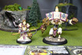 Protectorate of Menoth Battlegroup Lot 6219 Blue Table Painting Store
