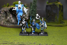 Vampire Counts Skeletons Lot 6386 Blue Table Painting Store