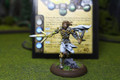 Anima Tactics Vayl Lot 7698 Blue Table Painting Store
