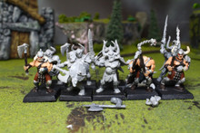 Warriors of Chaos Marauders Lot 7927 Blue Table Painting Store