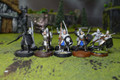 LOTR Warriors of Minas Tirith Lot 7948 Blue Table Painting Store