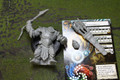 Trollbloods Impaler Lot 8038 Blue Table Painting Store