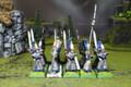 High Elf Swordmasters Lot 8599 Blue Table Painting Store