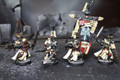 Dark Angel Honor Guard Lot 8707 Blue Table Painting Store