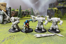 Trollbloods Battlegroup Lot 9031 Blue Table Painting Store
