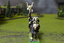 Warriors of Chaos Sorcerer Lot 10392 Blue Table Painting Store