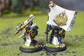 Cygnar Sword Knight Officer and Standard Lot 11075 Blue Table Painting Store