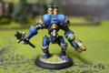 Cygnar Firefly Lot 11095 Blue Table Painting Store