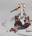 Protectorate Harbinger of Menoth Lot 14132