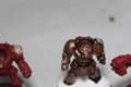 Lot 14211 Space Marine Terminators
