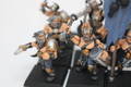 Slaves to Darkness Chaos Warrior Marauders painted x16 Lot 15189