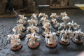 Strange Alternate Chaos Marine Cult models x20 Lot 15497